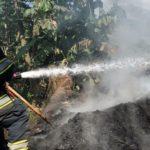 Cormacarena suspende quema a cielo abierto en Molino Indupaddy