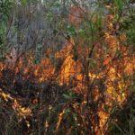 Recomendaciones para evitar incendios en esta temporada