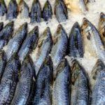 Cuidado con el pescado que va a consumir en Semana Santa