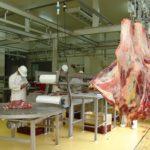 Invima nuevamente inspeccionará el matadero de Yopal