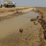 Se calma la sed a miles de chigüiros en las sabanas 'ariporeñas'