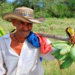 Procuraduría media para que gobierno y organizaciones sociales definan qué es ser campesino y cuántos hay en Colombia