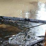 Ecopetrol debe indemnizar por los perjuicios del derrame de petróleo del pozo La Lisama: Procuraduría