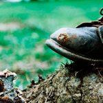 Yopal será reconocido como territorio libre de riesgo de minas antipersona