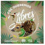 ¡Los queremos libres!, campaña de entrega voluntaria de fauna silvestre
