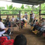 Productores de Arauca quieren exportar plátano de calidad