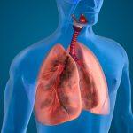 21 de noviembre: Día Mundial de la Enfermedad Pulmonar Obstructiva-EPOC